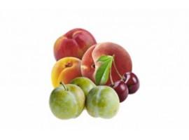 FRUITS A NOYAUX