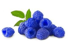 RASPBERRY BLUE